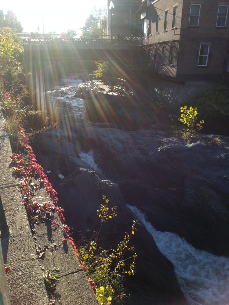 Brattleboro, Vermont - Vegetal Matters